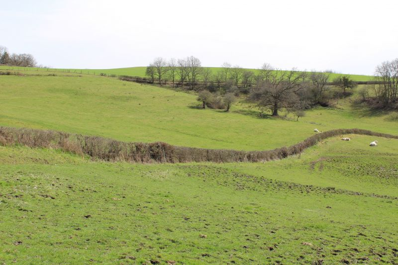 Vue de la terrasse Location Gite 112322 Autun