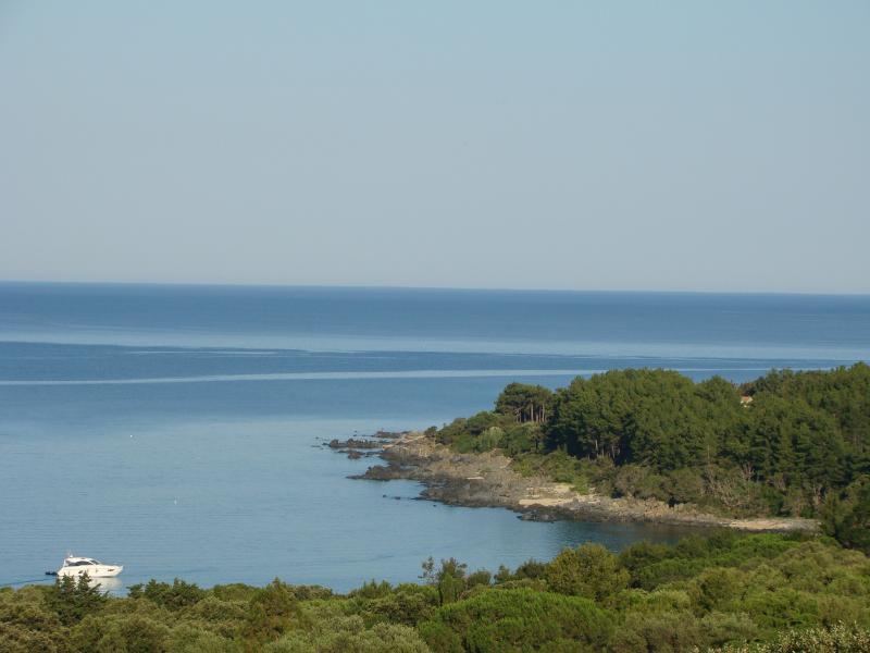 Vue depuis la location Location Villa 79457 Propriano