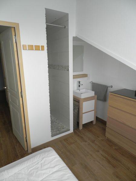 Salle d'eau 2 Location Appartement 88678 Saint Lary Soulan
