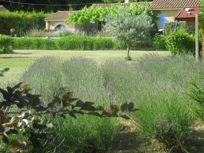 Jardin Location Villa 92129 Cavaillon