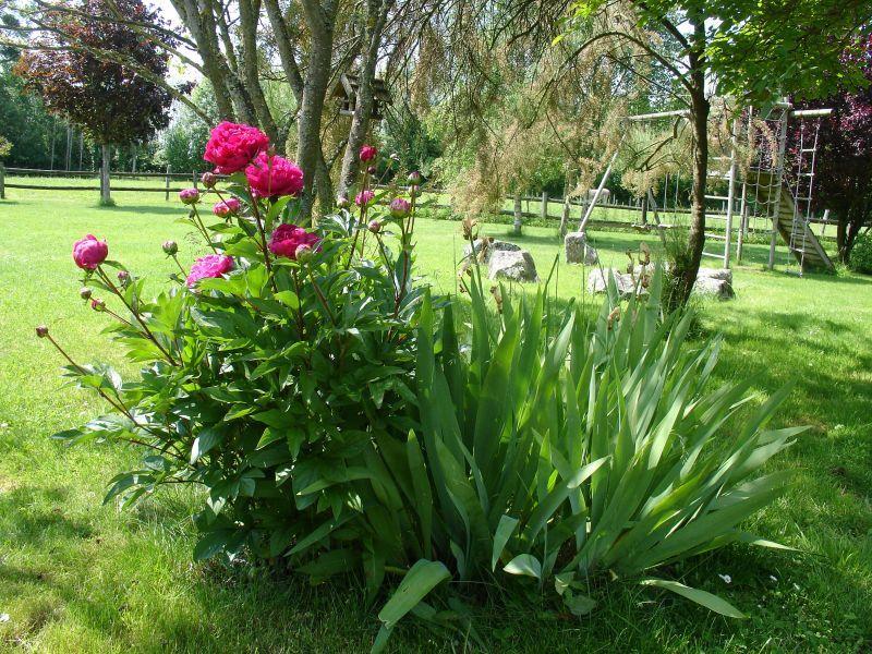 Jardin Location Gite 93043 Dol-de-Bretagne