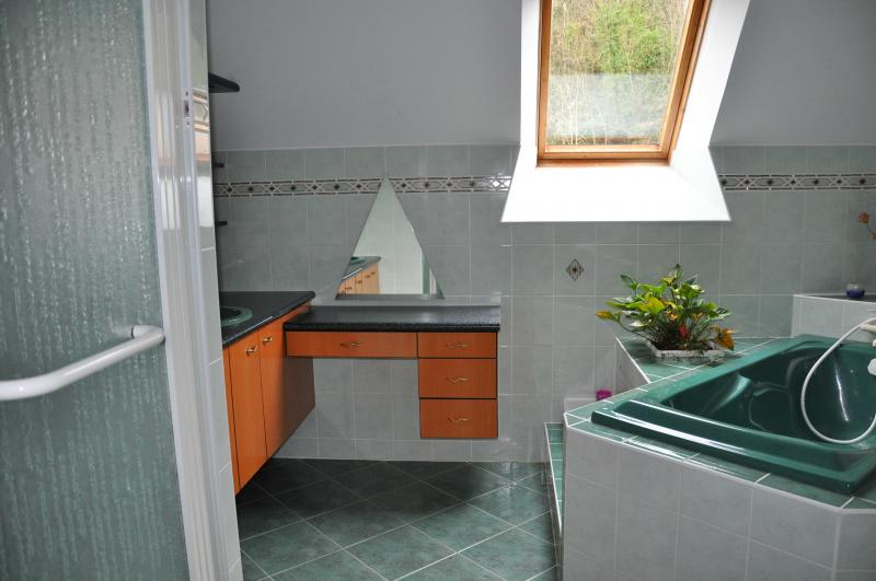 salle de bain Location Gite 93043 Dol-de-Bretagne