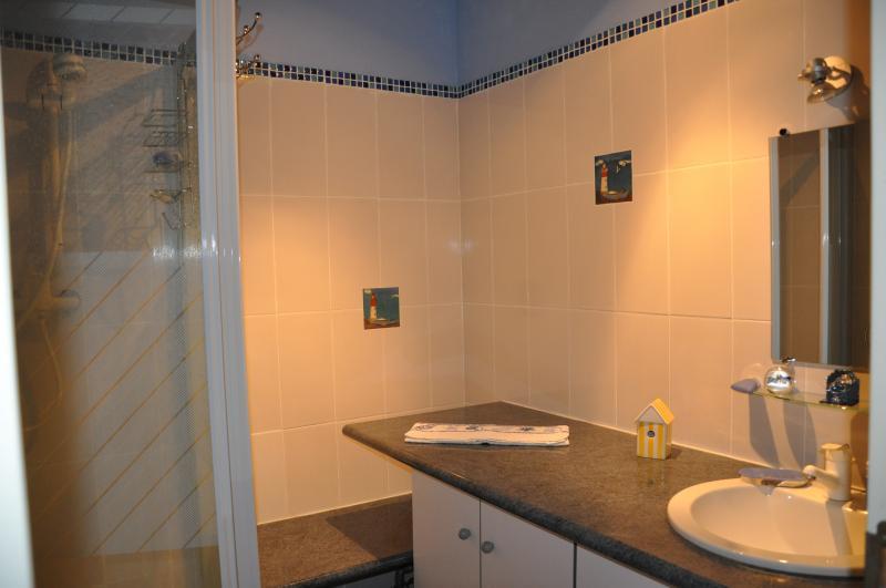 Salle d'eau Location Gite 93043 Dol-de-Bretagne