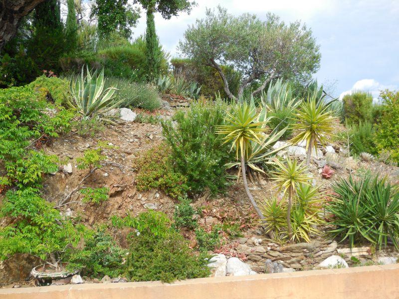 Jardin Location Villa 98154 Hyères