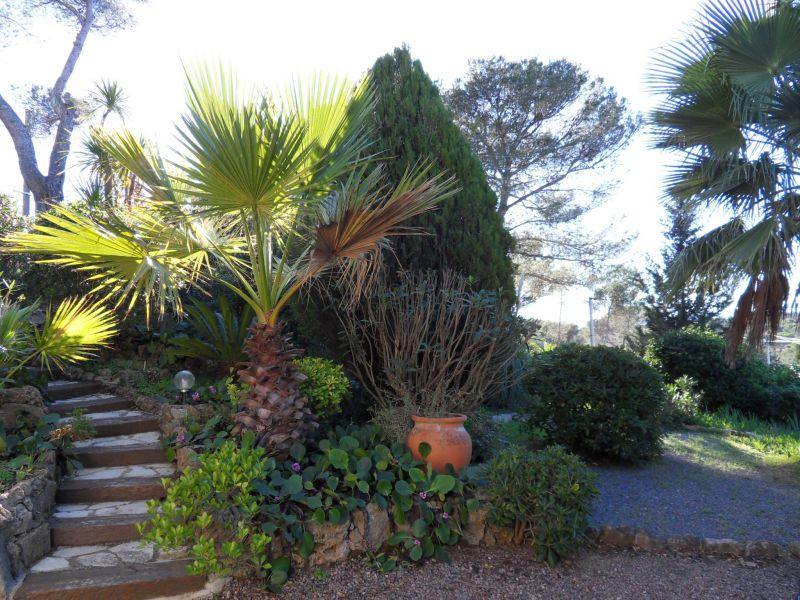 Jardin Location Appartement 102544 Saint Raphael