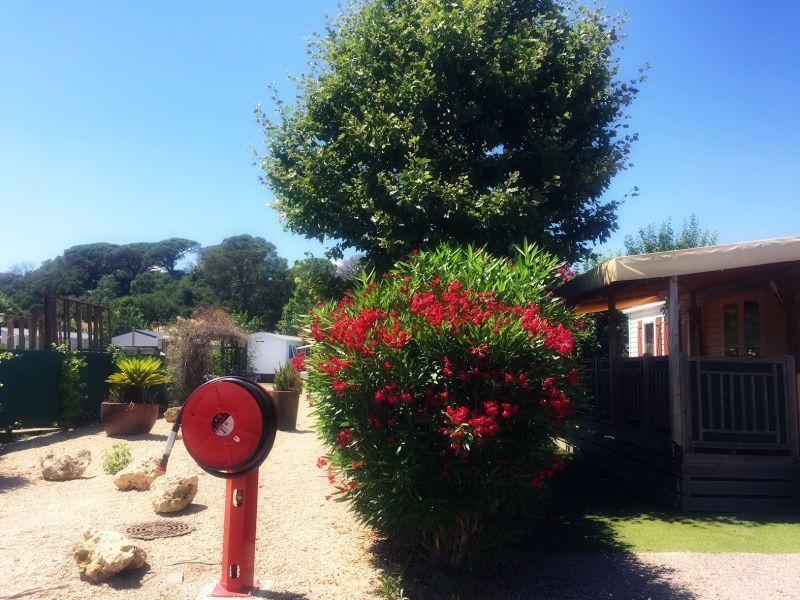 Vue depuis la location Location Mobil-home 116061 Fréjus