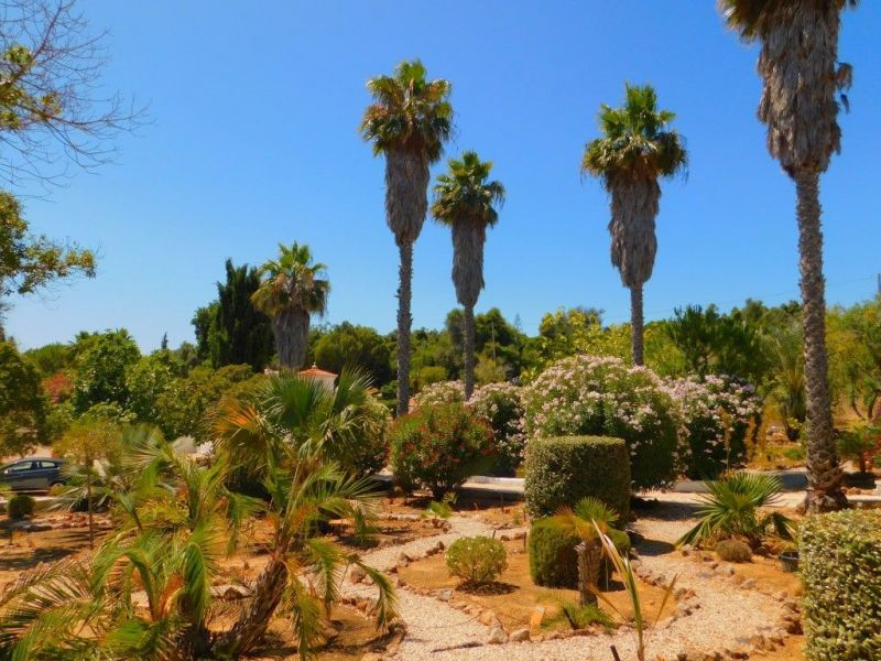 Jardin Location Gite 117556 Carvoeiro