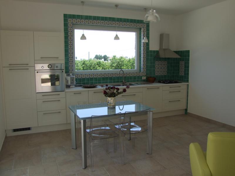 Cuisine américaine Location Villa 70846 Polignano a Mare