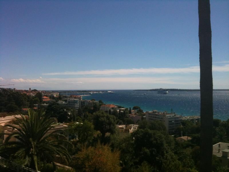 Location Appartement 73628 Cannes