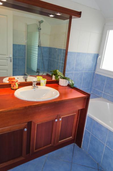 salle de bain Location Appartement 85760 Saint Leu
